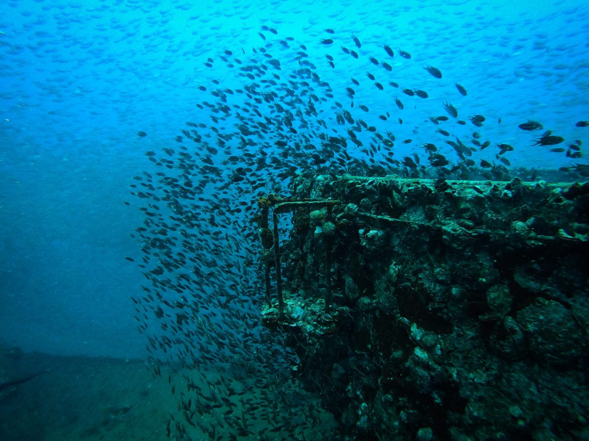 HTMS CHANG WRECK